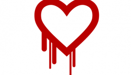 heartbleed-bug-100260024-large